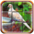 Android Bird Puzzle icon