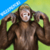 Funny Monkey Wallpapers icon