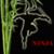 Run Ninja Jumping icon