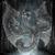 Dragon Castle Live Wallpaper icon