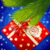 Christmas Hidden Picture icon