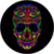 Colorful Skull LWP icon