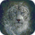 White Bengal Tiger Live Wallpaper icon