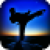 Taekwando Fight app for free