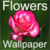 HD Flowers Wallpapers icon