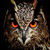 Wild Owl Live Wallpaper icon