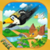 Crazy Bird Race icon