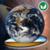 Cosmic Surfer app for free