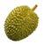 Benefits of Durian app for free