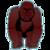 Gorillas app for free