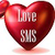 loves sms icon
