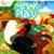 FowlPlay icon