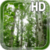 Birch Forest LWP Free app for free
