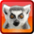 King Julian app for free
