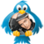 Bruno Mars Tweet app for free