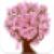 Breast Cancer Symptoms icon