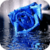Blue Rose In Rain Live Wallpaper icon