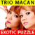 Trio Macan Exotic Puzzle icon