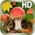 Autumn Leaves Mushroom Live HD app for free