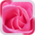 Pink Rose Live Wallpaer icon