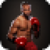 Box Fighters 3D icon