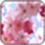 Pink Flower Image_1 app for free