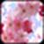 Pink Flower Image_1 app for free