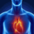The Heart Disease app for free