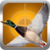 Duck Hunting Calls free app for free