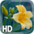 Yellow Flower LWP app for free