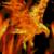 Eagle On Fire Live Wallpaper icon