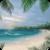 Summer Beach Island LWP app for free
