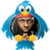 Lil Wayne - Tweets app for free