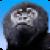 Monkey War 3D app for free