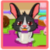 Cute Bunny Care icon
