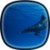 Dolphins LWP HD icon