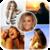 Photo Collage Maker Free icon