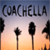 Coachella Festival Wallpapers icon