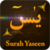 Surah Yaseen Audio Translation app for free