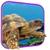 Turtle 3D Live Wallpaper icon