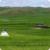 grassland app for free