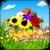 Flowery Falls Free icon