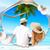 Beach Photo Frames app for free