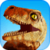 Dinosaur Test app for free