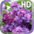 Flower Lilac Live Wallpaper icon