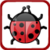 Lady Bug Tap icon