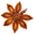 Benefits of Star Anise icon