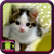 Cat Wallpaper Borders icon