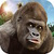 Angry Mad gorilla Wild Attack icon