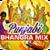 Punjabi Bhangra Mix app for free